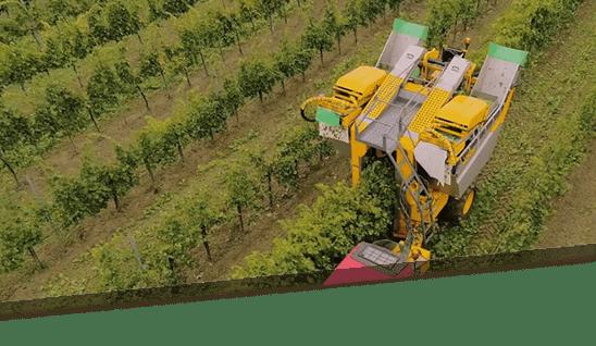 piquets de vigne en acier